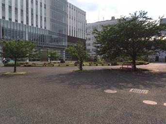 日本大学生産.JPG
